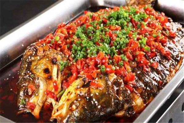 花千代烤鱼全国有多少加盟店
